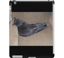 Spot The Magnificent iPad Case/Skin