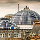 Manchester's Domed Skyline by Stephen Knowles
