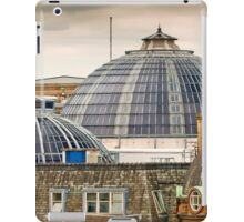 Manchester's Domed Skyline iPad Case/Skin