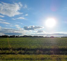 Countryside Landscape in the United States of America by Barberelli