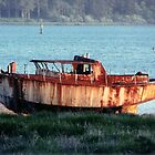 Rusted by mermanda