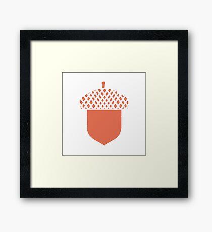 Peach Acorn Framed Print