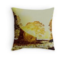 Dun Ringhill Throw Pillow