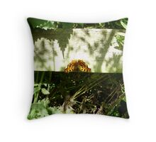 COMMA BUTTERFLY(POLYGONIA C-ALBUM)NYMPHALIDAE. Throw Pillow