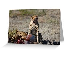 Cheetah Kill Greeting Card