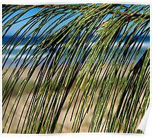 Beach Screen Poster