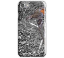 COLOUR POPPED ROBIN RED BREAST iPhone Case/Skin