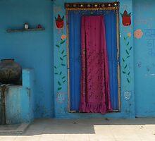 flowers around a blue door by handheld-films