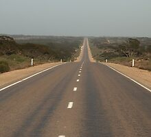 Nullarbor 5th crossing 19-9-2003 6.45 AM. Looking back west. by AndrewBentley