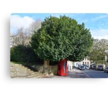Telephone Tree Canvas Print