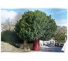 Telephone Tree Poster