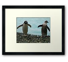 PENGUIN BUDDIES Framed Print