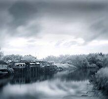 Rural 1 - #3 by danise tang