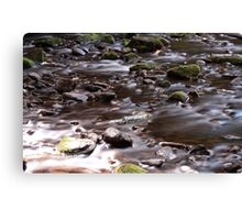 Abandoned Bottle, Water of Leith Canvas Print
