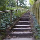 Park Steps by Glen Allen