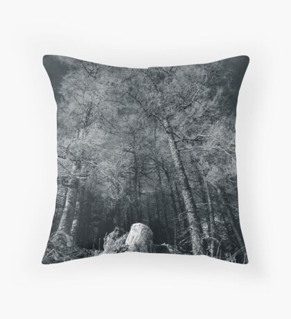 Larches of Dull Wood Throw Pillow