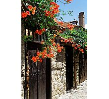 Flowers stretching out over the gates of an old house in Nessebar, Bulgaria Photographic Print