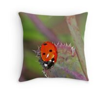 Life moves pretty fast.... Throw Pillow