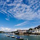 View from river Dart towards Dartmouth, Devon, England  by atomov