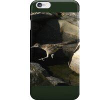 Leaping Roadrunner iPhone Case/Skin
