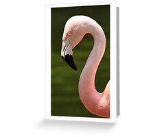 Pink (WFSEP) Greeting Card