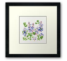 April Lupin  Framed Print