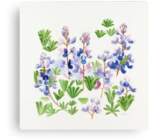 April Lupin  Canvas Print