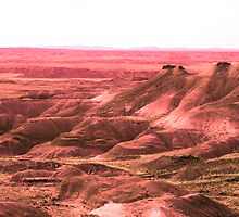 painted desert arizona by Sheila McCrea