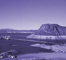 Elephant Butte Lake New Mexico by Sheila McCrea