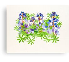 The color of Point Fermin    Canvas Print