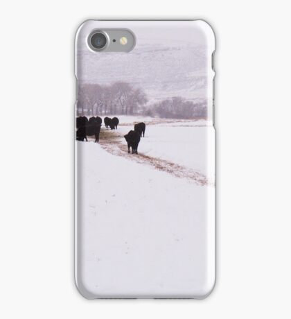 Livermore #8 iPhone Case/Skin