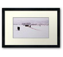 Livermore #8 Framed Print