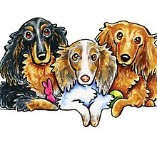 3 Longhaired Dachshunds by offleashart