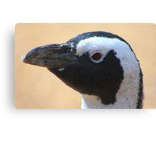 Penguin portrait......... Canvas Print