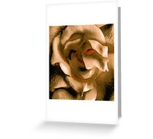 Lady in the Rose Greeting Card