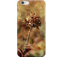 Lost in the desert iPhone Case/Skin