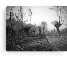 Destruction... Metal Print