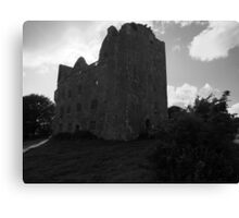 Lemenagh in black and white Canvas Print