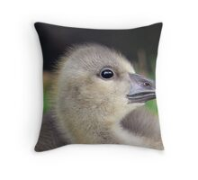 A Graylag Gosling Throw Pillow