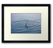 Entry Framed Print