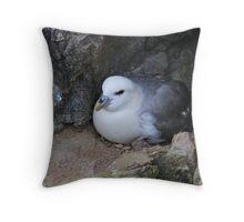 Fulmar Petrel, Shetland Throw Pillow