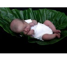 Baby sleeping in leaf Photographic Print