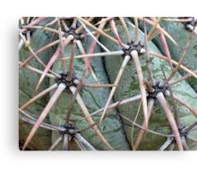 New Mexico Cactus Canvas Print