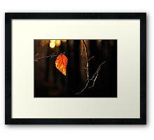 The last leaf of 2014 Framed Print