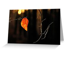 The last leaf of 2014 Greeting Card