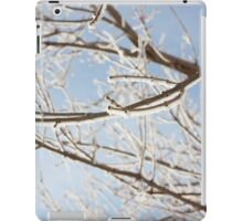 Frosty Branches iPad Case/Skin