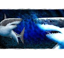 Great White Shark by David Pearce