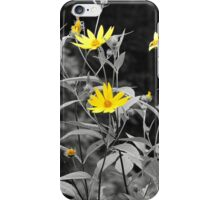 Chokeweeds SC iPhone Case/Skin