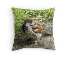 Cheeky Chap Throw Pillow
