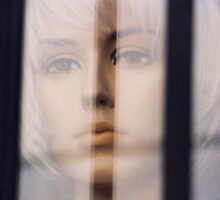 Behind Bars 2  by Kim Bender